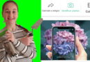 Identifique instantáneamente las plantas con PictureThis